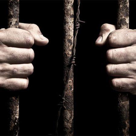 ბრალდებულთა და მსჯავრდებულთა უფლებების დაცვა (II მიღება)